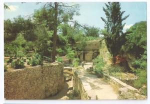 Jerusalem The Garden Tomb Israel c. 1970  4X6