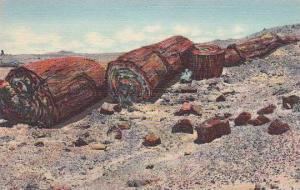 Arizona Petrifield Forest Logs Of Stone