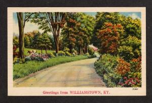 KY Vintage Greetings From Williamstown Kentucky Postcard Linen PC Carte Postale