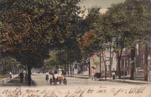 Delaware Avenue , BUFFALO , New York , PU-1907
