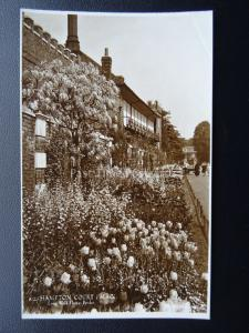 Richmond Hampton Court Palace LONG WALK FLOWER BORDER - Old RP Postcard