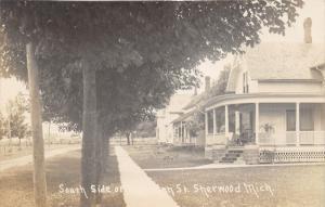 Sherwood Michigan~Sherman Street South Side~Residential Area~c1910 RPPC Postcard