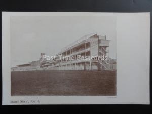 Berkshire ASCOT Racecourse GRAND STAND c1903 UB