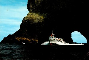 New Zealand Piercy Island Bay Explorer Going Through The Hole In ...