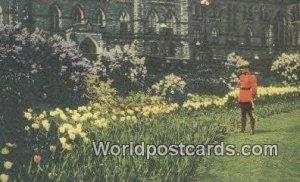Canadian Police, Tulip Beds, Parliament Buildings Ottawa Canada Unused