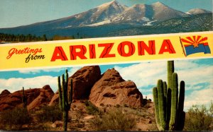 Arizona Greetings Showing Mountains and Saguaro Cactus