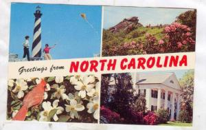 Greetings from North Carolina, 40-60s
