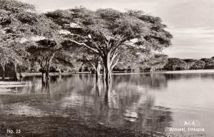 Real photo postcard Africa Ethiopia Aroussi Sombay Lake
