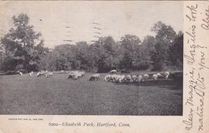HARTFORD, Connecticut, PU-1906; Elizabeth Park