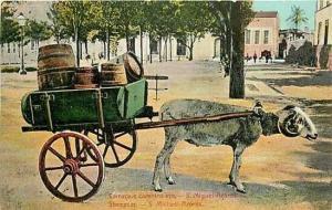 Portugal, Maderia, Sheepcar, S. Miguel-Acores