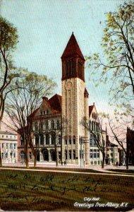 New York Albany City Hall 1907