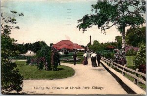 1908 Chicago, Illinois Postcard Among the Flowers at Lincoln Park Hand-Colored
