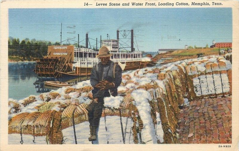 Memphis TN~Levee Scene and Water Front~Black Man Loads Cotton~1940 Postcard
