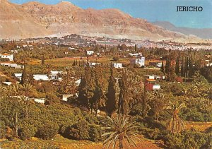 City of Palms in the Jordan Valley Jericho Israel 197