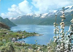 Norway Sorfjorden Hardanger Ullensvang Folgefonnen Glacier