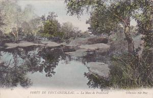 La Mare De Franchard, Foret De Fontainebleau (Seine et Marne), France, 1900-1...