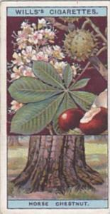 Wills Vintage Cigarette Card Flowering Trees &  Shrubs 1924 No 15 Horse Ch...