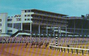 Horse Racing The Clubhouse Turn Monmouth Park Oceanport New Jersey