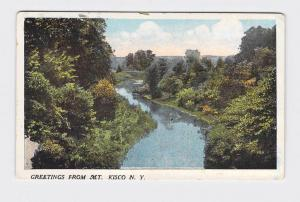 ANTIQUE POSTCARD NEW YORK GREETINGS FROM MT. KISCO BIRDS EYE VIEW OF RIVER