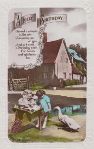 Dog Puppy In Wheelbarrow Farming Farm Cottage Swan Antique Photo Real Postcard