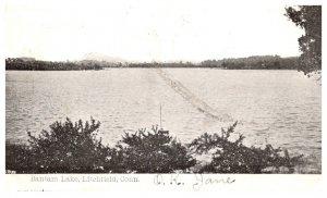Connecticut  Litchfield , Bantam lake