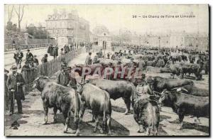 Old Postcard Folklore A fairground Limousin Cows Walk TOP