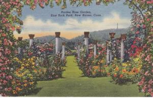Pardee Rose Garden - East Rock Park - New Haven CT Connecticut - pm 1949 - Linen