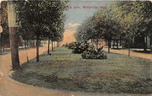 F18/ Wellsville Ohio Postcard c1910 Clark Avenue Homes 11