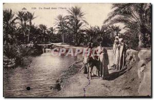 Old Postcard North Africa A Oued in Oasis Donkey Donkey