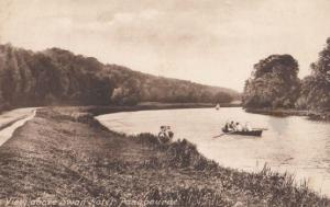 Boat Trips at the Swan Hotel Pangbourne Berkshire Antique Postcard