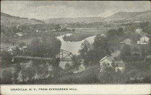 Unadilla NY From Evergreen Hill c1905 Postcard