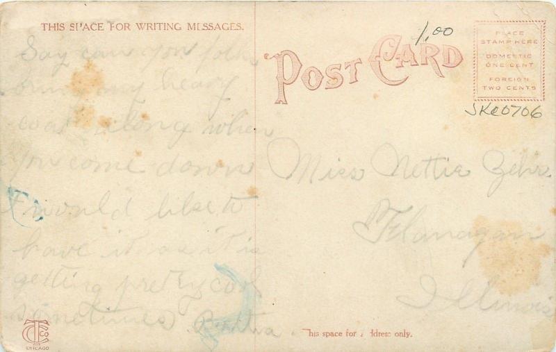 Bloomington Illinois~Edwards School~1910 Postcard