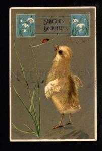047467 Cute CHICKEN & LADYBIRD vintage EASTER RUSSIA