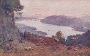 Sunset, Sheep, Windermere From Wansfell, England, UK, 1910-1920s