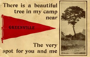 ME - Greenville. There's a beautiful tree in my camp…     (creases)