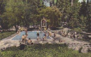California Cobb Lake County Pine Grove Resort Swimming Pool Albertype