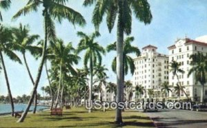Flagler Drive - Lake Worth, Florida FL Postcard