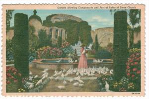 2723  CA  San Juan Capistrano  Garden showing Campanario- Pigeon Lady