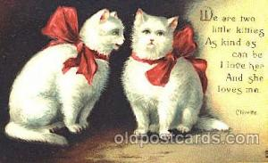 Cat, Cats Postcard Post Card