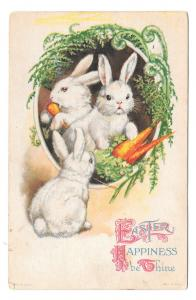 Easter Rabbits Carrots Vintage Wolf & Co Unsigned Clapsaddle Postcard 1926