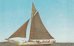 J. T. LEONARD, Round-bottom topmost oyster sloop on Chesapeake Bay, 1940-60s