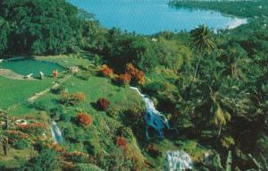 Jamaica Tropical Gardens At North Shore Near Ocho Rios