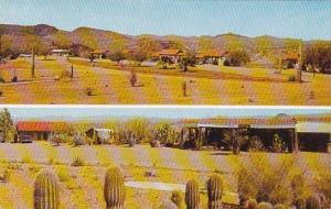 Arizona Wickenburg Cactus Garden Lodge
