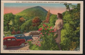 Color PC Mt Pisgah & Parking Area, Western North Carolina, Unused