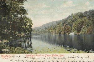 DANBURY , CT , 1906 ; Bradley's Pond