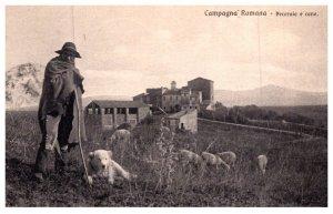 Dog ,  Sheep Herder dog , sheep