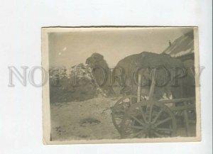 3183910 Turkmenistan Camel photo ASHKHABAT 1933 year