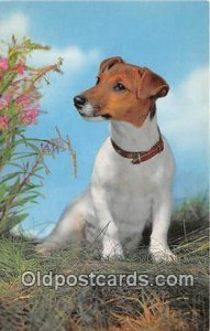 Jack Russel Terrier Salmon Watercolour Dog Unused