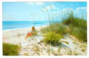 Greetings from Myrtle Beach,  South Carolina,  40-60s
