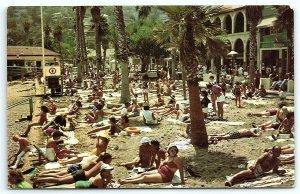 VTG Postcard Santa Catalina California CA Avalon Sun Bathers Bathing Beach A8